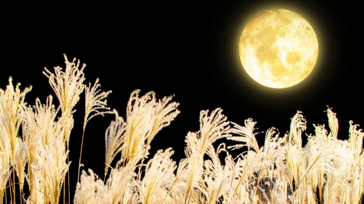 幸せを楽しむ♪「中秋の名月」